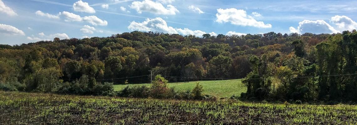 Lake Ozark & Rhineland MO Real Estate – Farms, Hunting Land